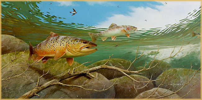 Fred w thomas art artwork game fish sporting dogs for Alabama game and fish